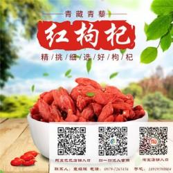 【青海青藜】|福建红枸杞价格|三明红枸杞
