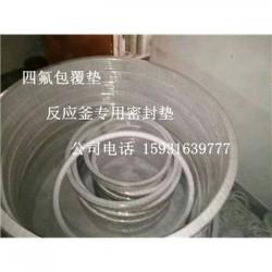 广元搪瓷罐口/人孔四氟包覆垫片尺寸介绍-制